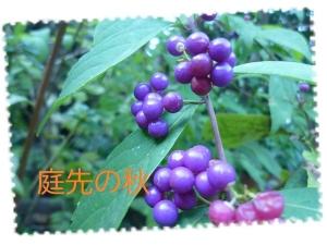 Photo_20201014181901